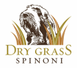 Dry Grass Spinone